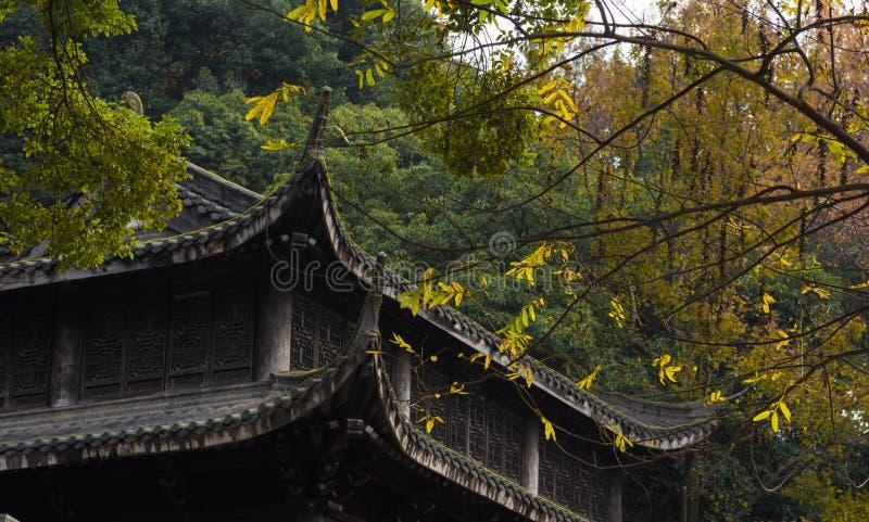 świątynni zbliżenie chińscy okapy zdjęcia stock