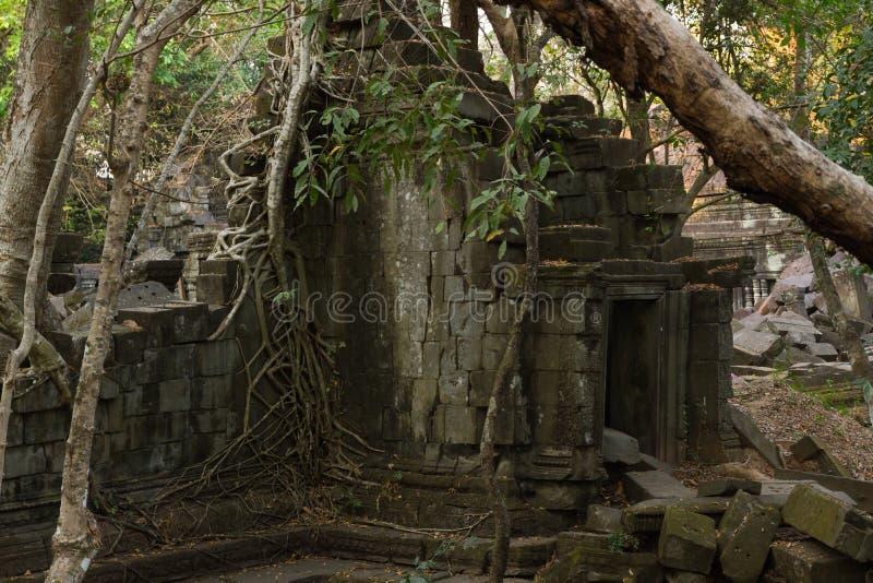 Świątynny Beng Mealea, Angkor Wat, Kambodża zdjęcie royalty free