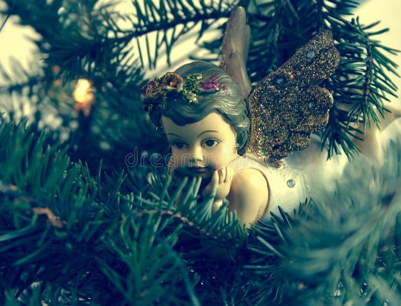 Święta aniołów fotografia stock