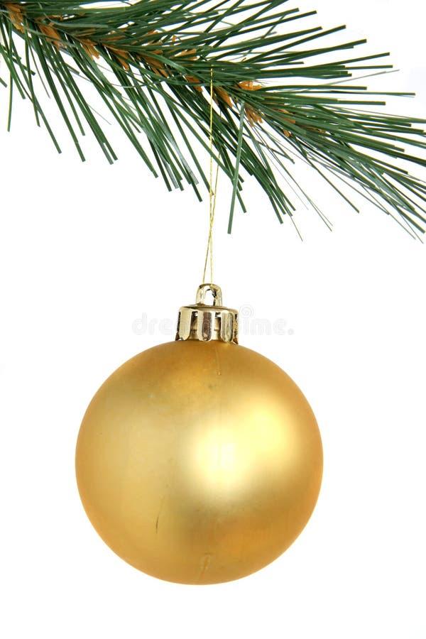 Święta balowych złoty wiszący drzewo zdjęcia royalty free