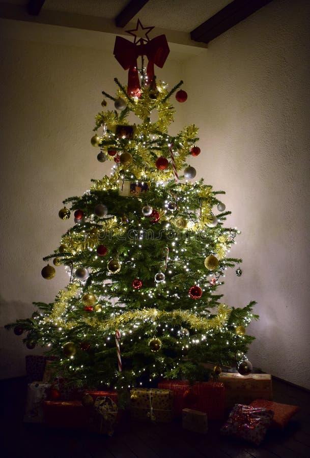Święta domów drzewa fotografia royalty free