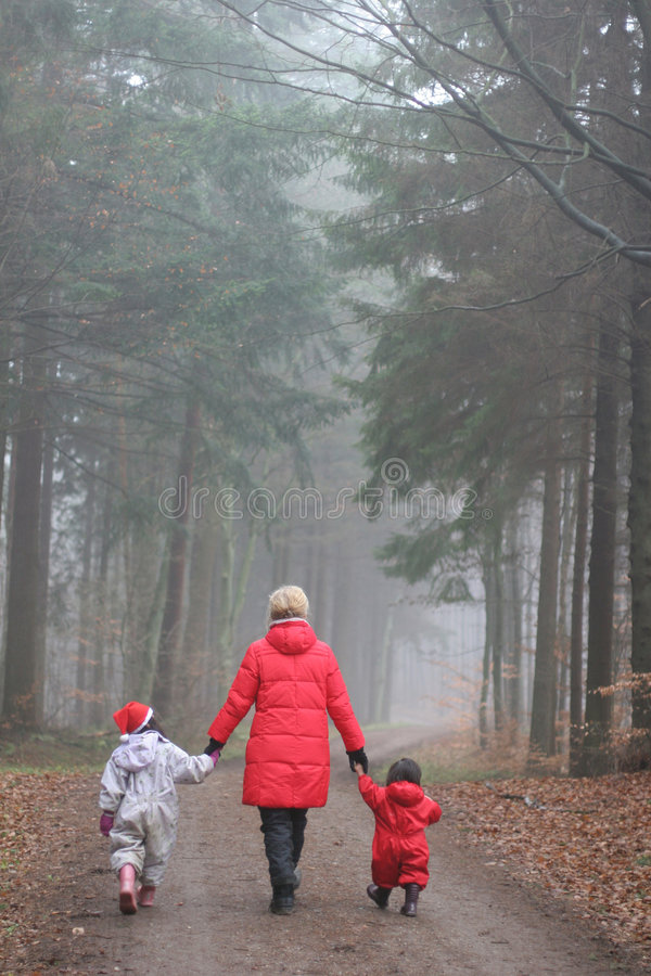 Święta leśne obrazy royalty free