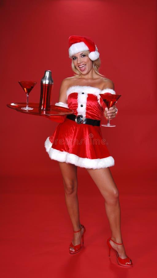Święta Martini zdjęcie royalty free