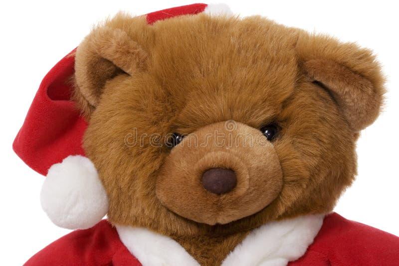 Święta niedźwiadkowi zdjęcia royalty free