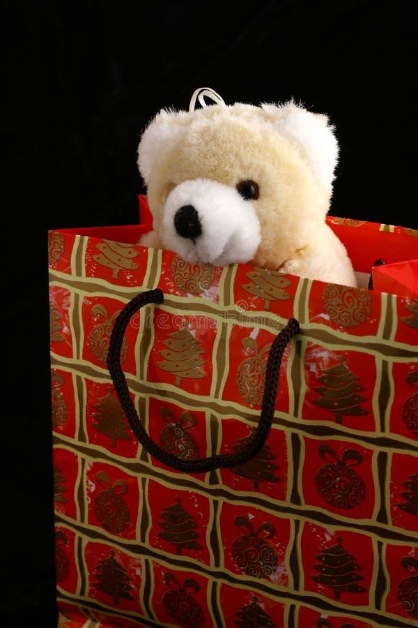 Święta niedźwiadkowi toreb, zdjęcie royalty free