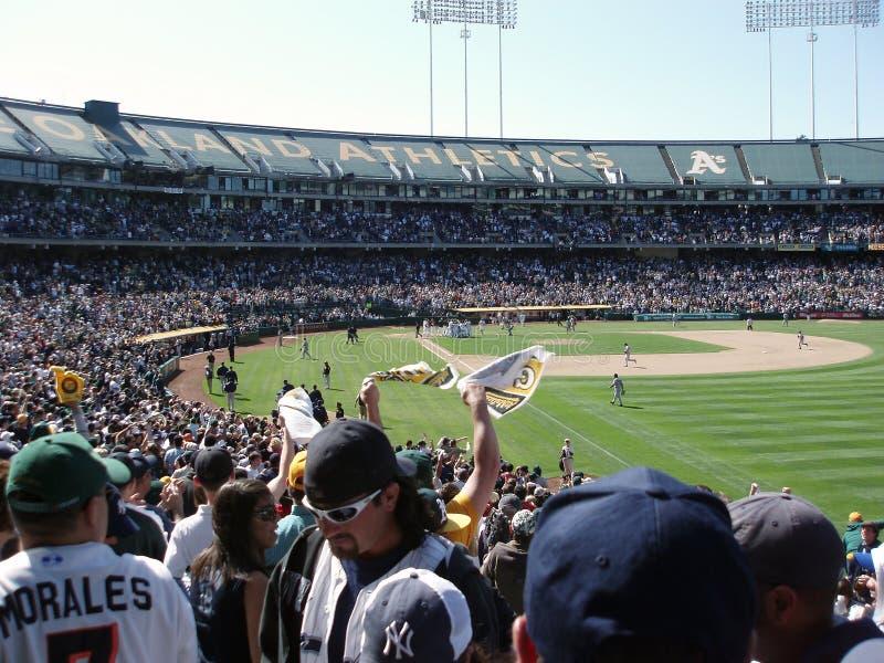 Gracze w softball spotykający się z graczami w baseball