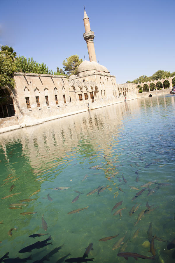 Święty jezioro & meczet zdjęcie royalty free