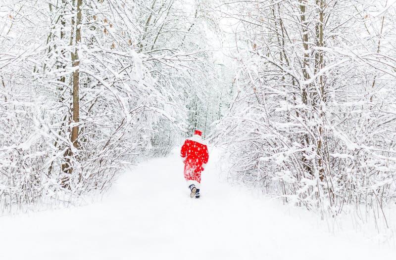 Święty Mikołaj w czerwonym kostiumowym spacerze w zima lesie daleko widok z powrotem zdjęcie royalty free