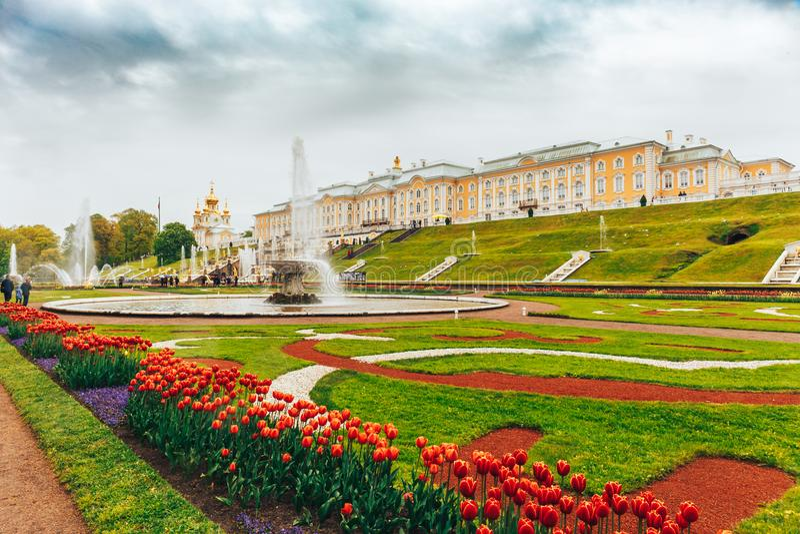Święty Petersburg, Rosja - Około Czerwiec 2017: Uroczysta kaskada w Pertergof lub Peterhof w St Petersburg zdjęcie royalty free