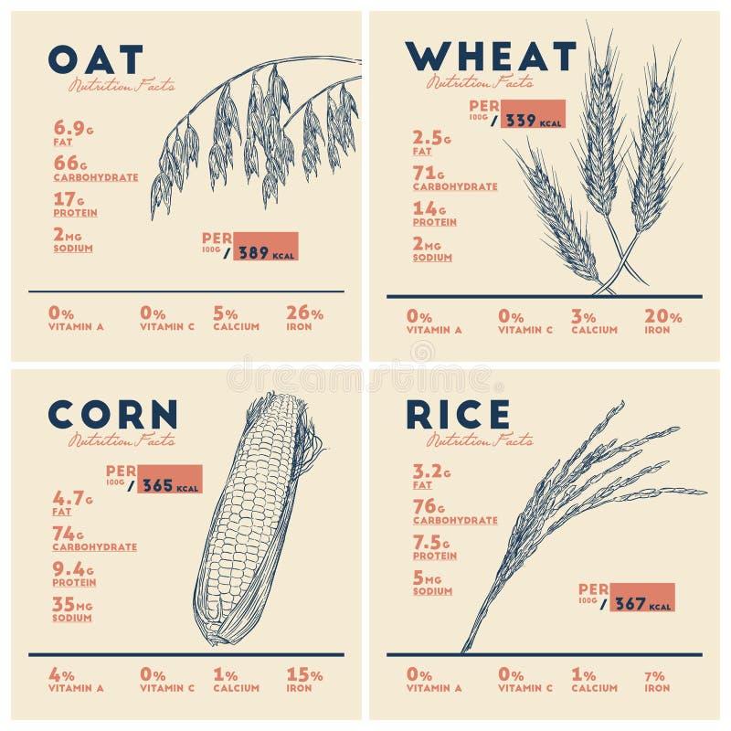 Świadczenia zdrowotne zboża, ryżowy pszeniczny owies i kukurudza, odżywczy ilustracja wektor