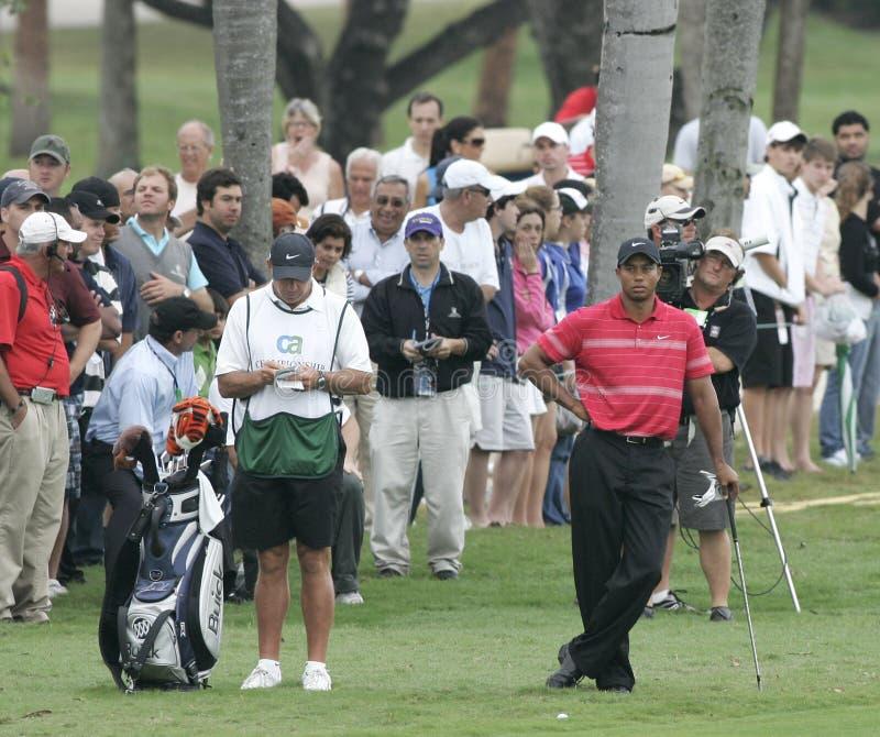 2008 światów Golfowi mistrzostwa - CA mistrzostwo obraz royalty free