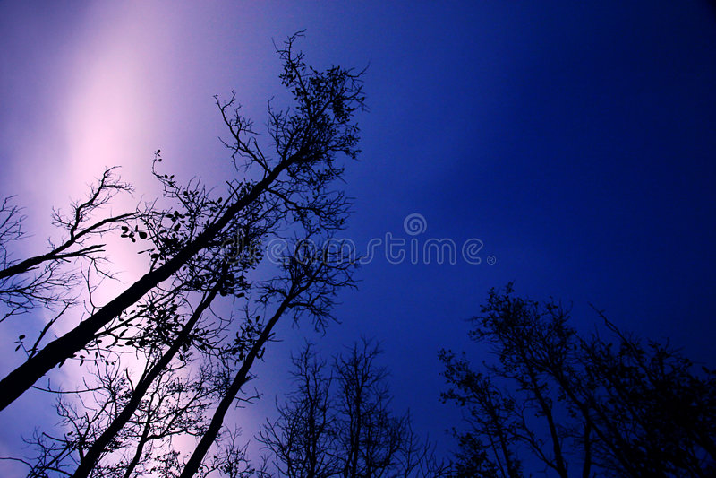światła różowią niebo zdjęcia royalty free