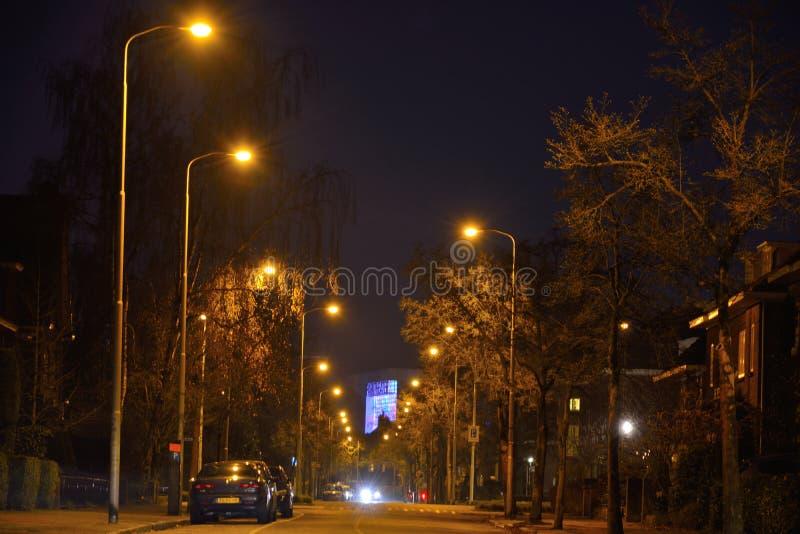 Światła ruchu, holenderska ulica przy nocą obraz royalty free