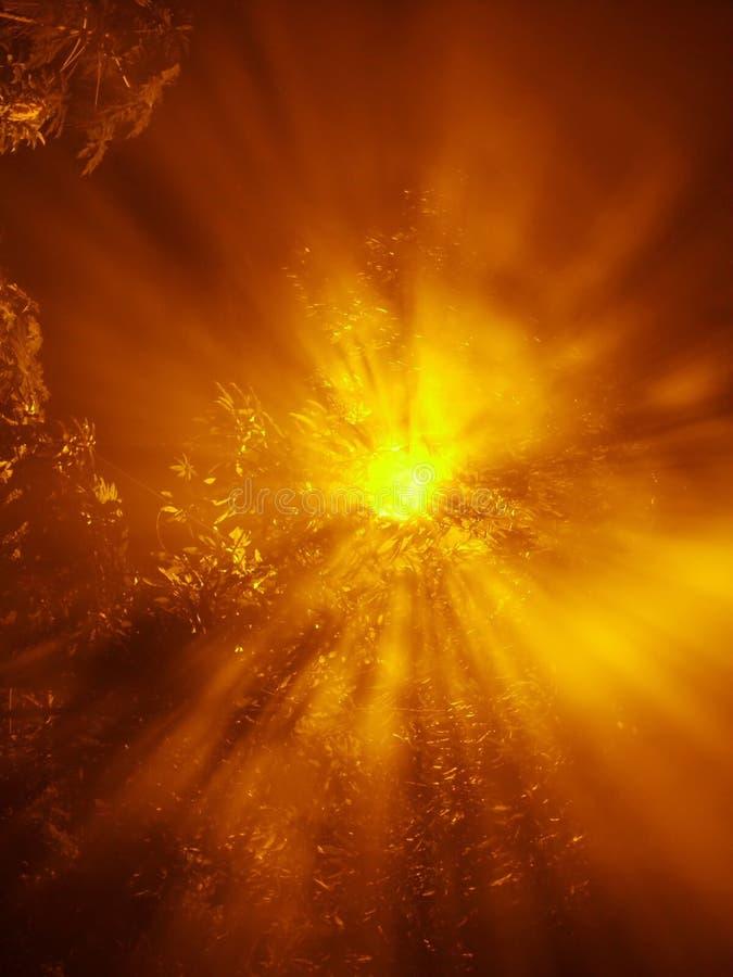 światło świeci Zdjęcie Stock