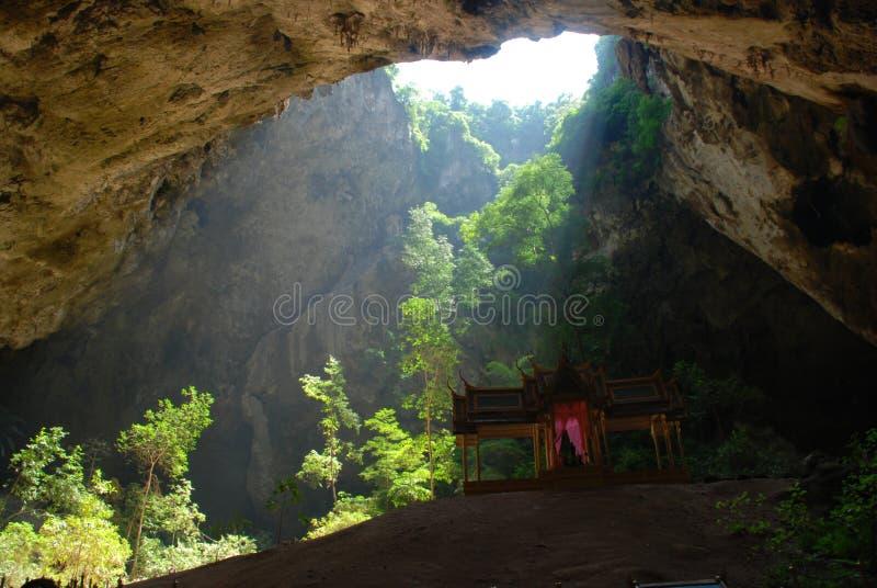 Światło świeci przez jaskinię do drzewa zdjęcie stock