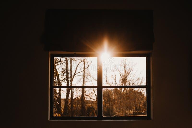 Światło i cień porannego lub słonecznego klimatu Egzotyczne światło przechodzi przez drzewo cień i promień światła na miejscu obrazy stock