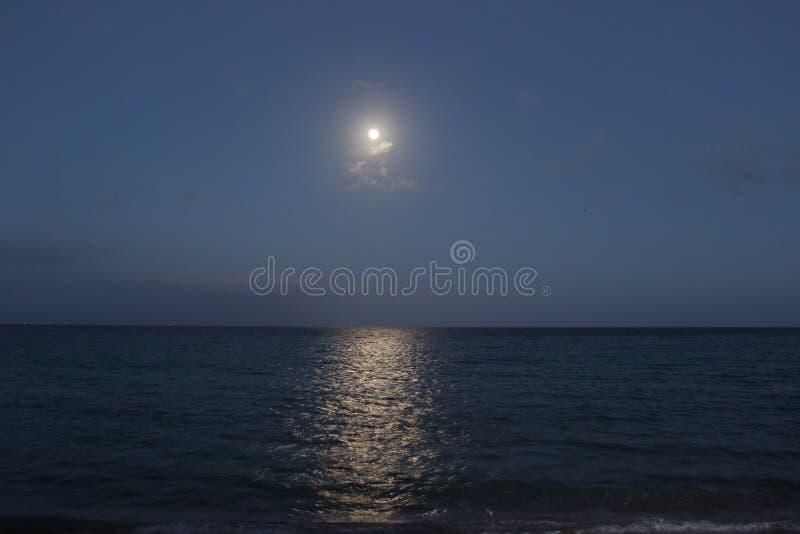 światło księżyca zdjęcia royalty free