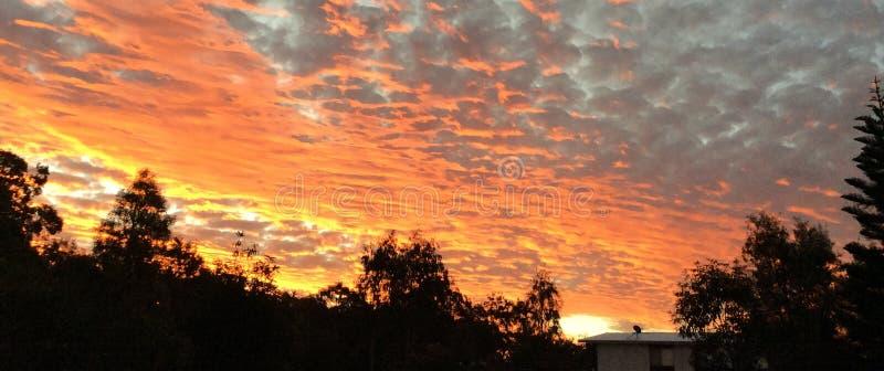 Światło słoneczne Brzegowy Qld obraz royalty free
