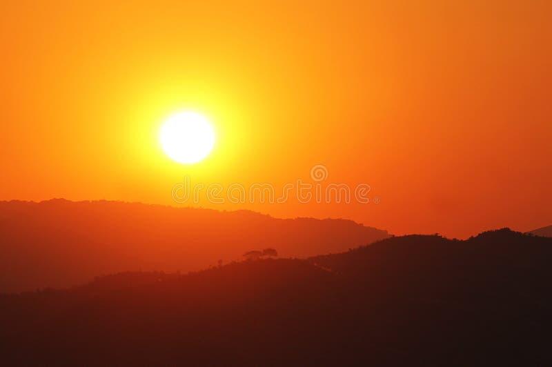 światło słoneczne i osamotneni serca zdjęcie royalty free