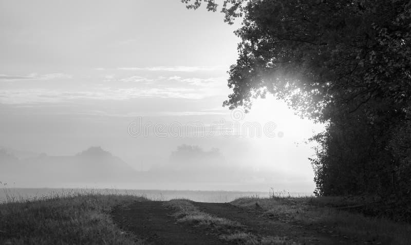 Światło słoneczne nad mglistą łąką i drogą zdjęcia stock