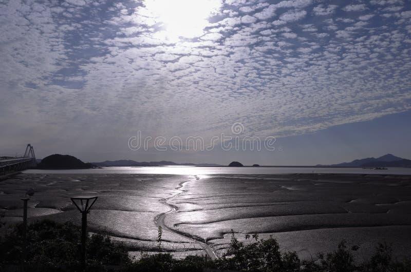 Światło słoneczne odbija z mokrego mudflat podczas odpływu przypływu pływowego kanału i obraz stock
