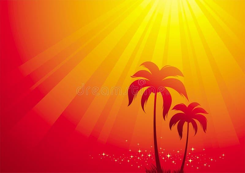 świateł palmowi słoneczne drzewa royalty ilustracja