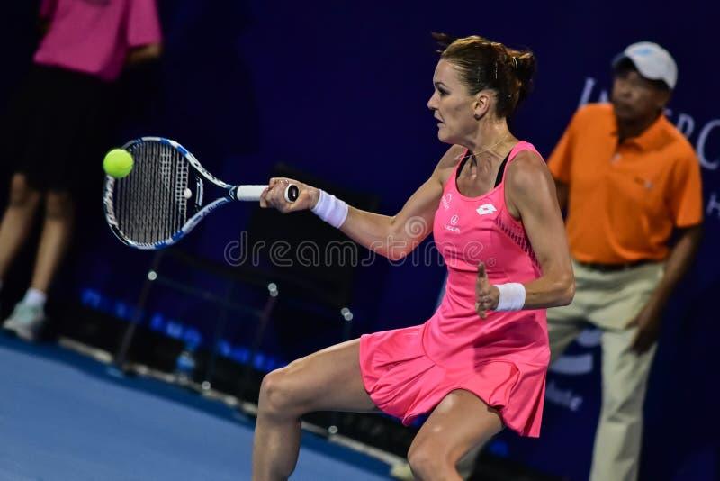 Światowy żeński gracz w tenisa Aginieszka Radwanska obrazy royalty free