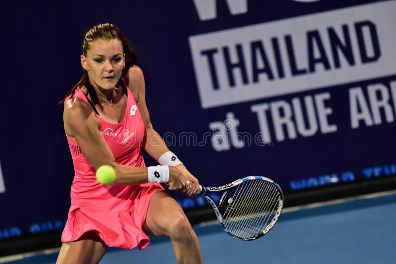 Światowy żeński gracz w tenisa Aginieszka Radwanska zdjęcie royalty free