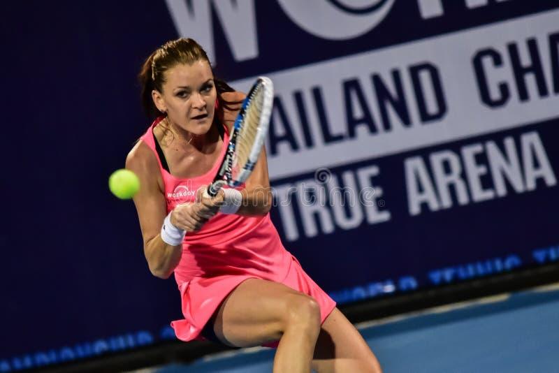 Światowy żeński gracz w tenisa Aginieszka Radwanska obrazy stock