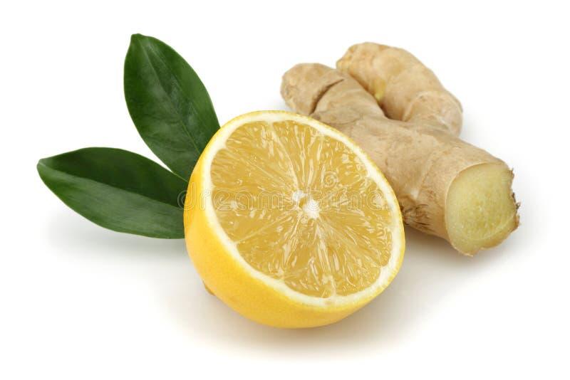 Świeża cytryna z imbirem obraz stock