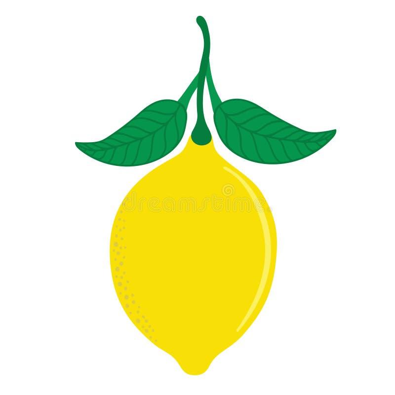 Świeża cytryna z liśćmi Odizolowywającymi fotografia royalty free