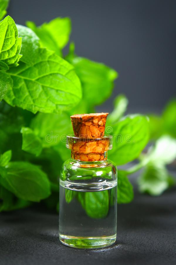 Świeża domowej roboty zielona miętówka i masło w szklanej małej butelce na szarym zmroku betonu stole zdjęcia royalty free