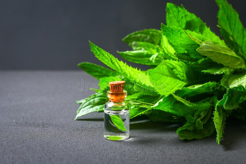 Świeża domowej roboty zielona miętówka i masło w szklanej małej butelce na szarym zmroku betonu stole zdjęcie royalty free