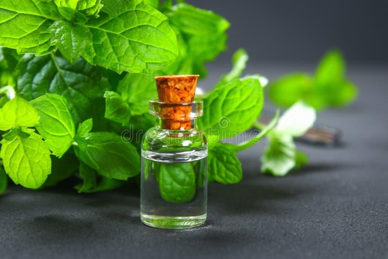 Świeża domowej roboty zielona miętówka i masło w szklanej małej butelce na szarym zmroku betonu stole obrazy stock