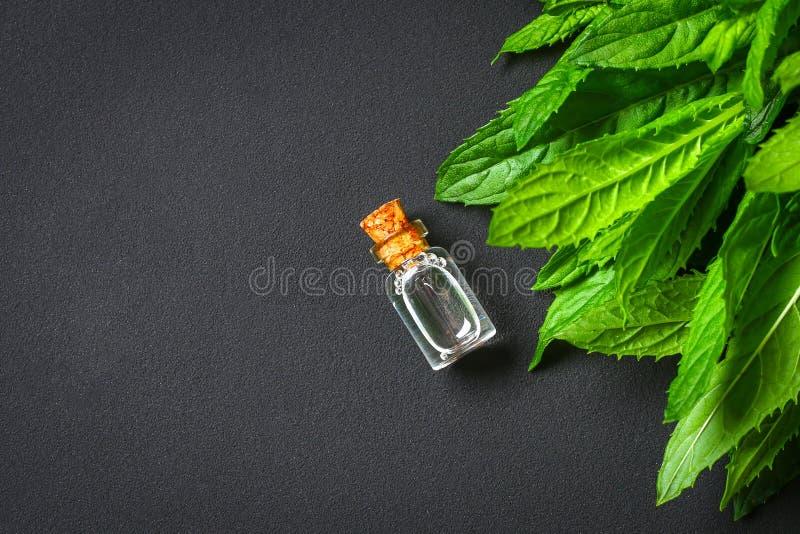 Świeża domowej roboty zielona miętówka i masło w szklanej małej butelce na szarym zmroku betonu stole Odgórny widok obraz stock