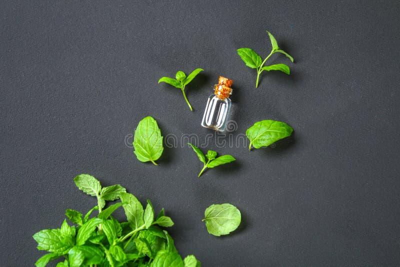 Świeża domowej roboty zielona miętówka i masło w szklanej małej butelce na szarym zmroku betonu stole Odgórny widok obrazy stock