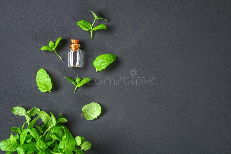 Świeża domowej roboty zielona miętówka i masło w szklanej małej butelce na szarym zmroku betonu stole Odgórny widok zdjęcie stock