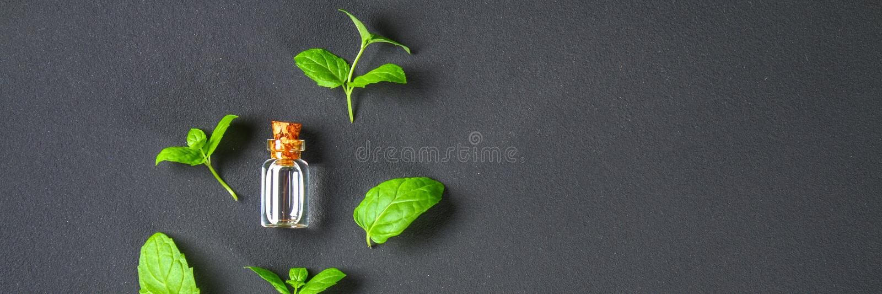 Świeża domowej roboty zielona miętówka i masło w szklanej małej butelce na szarym zmroku betonu stole Odgórny widok obraz royalty free