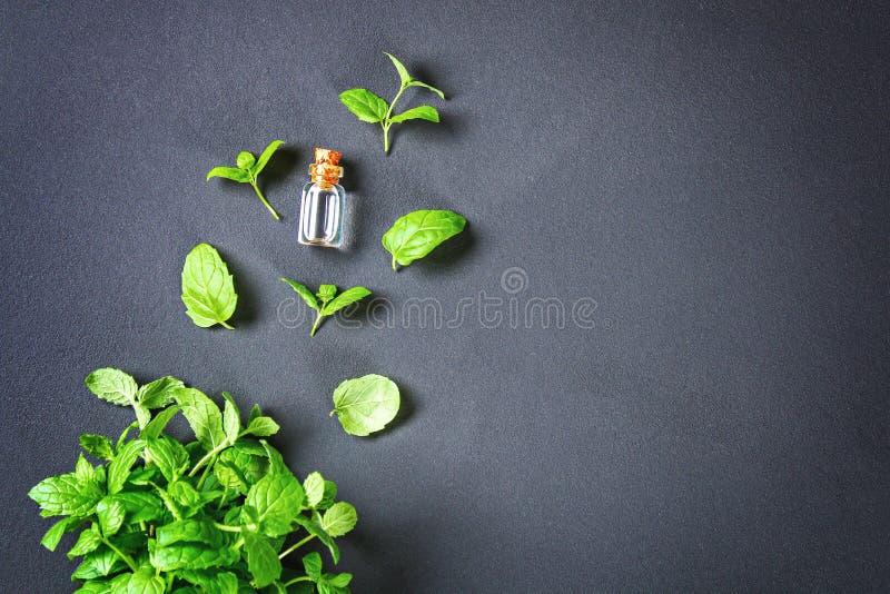 Świeża domowej roboty zielona miętówka i masło w szklanym małym bott obraz royalty free
