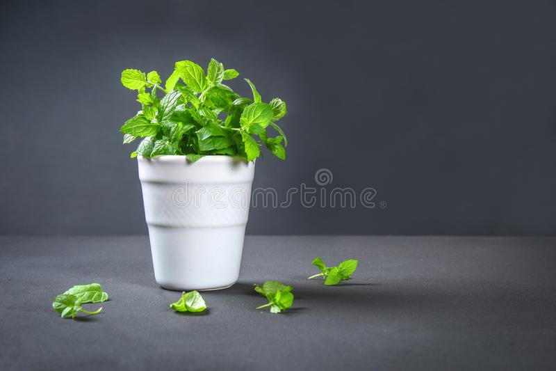 Świeża domowej roboty zielona miętówka na szarym zmroku betonu stole obrazy stock
