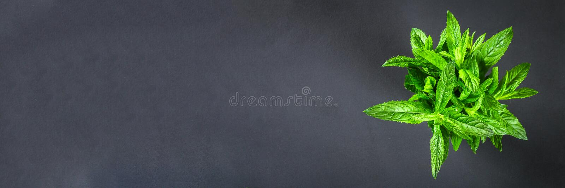 Świeża domowej roboty zielona miętówka na szarym zmroku betonu stole Odgórny widok obrazy royalty free