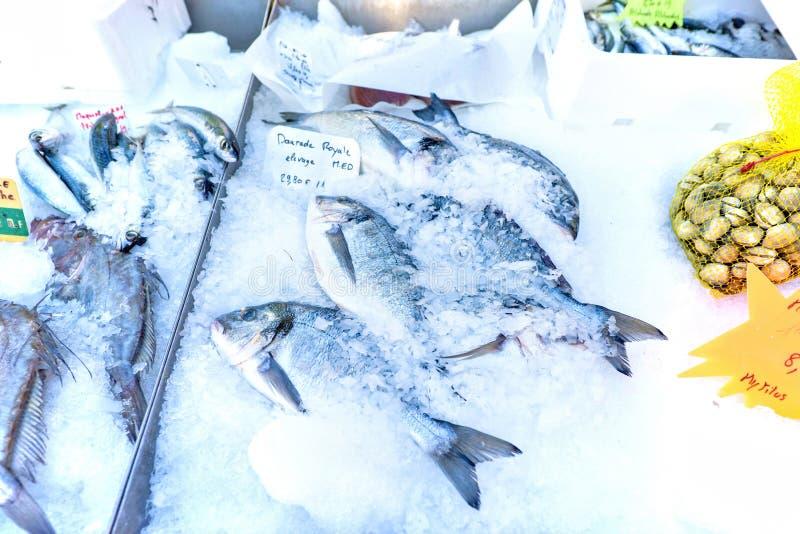 Świeża dorado ryba na lodzie dla sprzedaży z ceną podpisuje wewnątrz lokalną ocenę zdjęcia royalty free