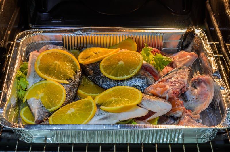 Świeża dorado ryba z pomarańczami na wypiekowej tacy w piekarniku fotografia stock
