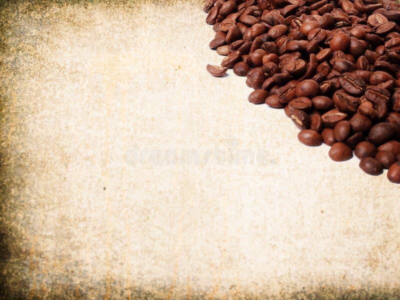 świeża fasoli kawa zdjęcia royalty free