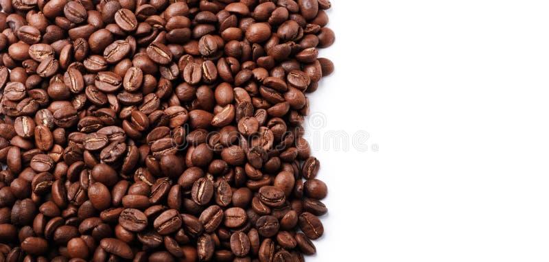 świeża fasoli kawa obrazy royalty free