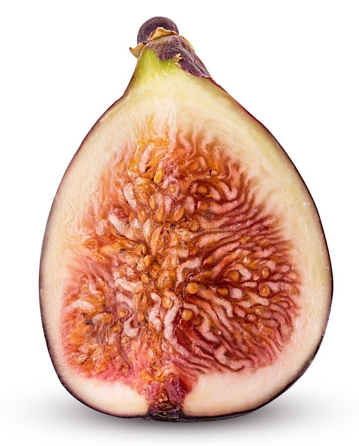 Świeża figi owoc ćwiartka zdjęcie royalty free