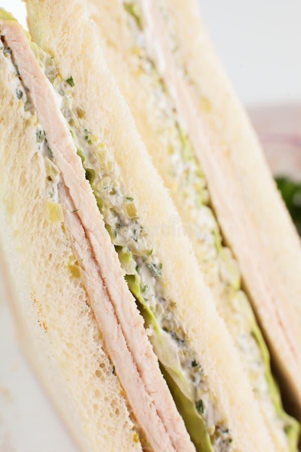 Świeża kanapka na białym tle zdjęcia stock