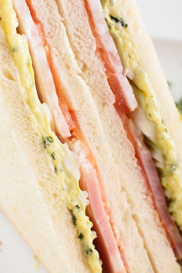Świeża kanapka na białym tle zdjęcie stock