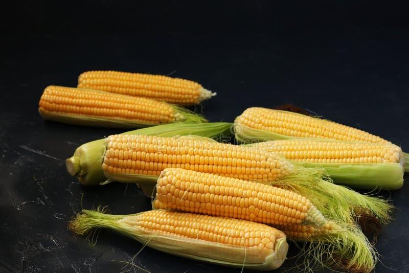 Świeża kukurudza na cobs lokalizuje na ciemnym tle obraz stock