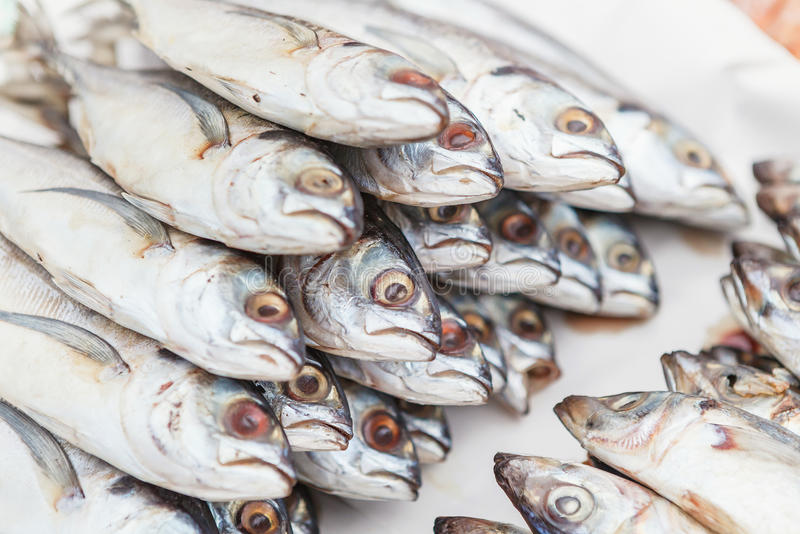 Świeża makrela na targowym kramu w Tajlandia zdjęcie royalty free